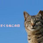 猫の殺処分ゼロを目指して。3月22日は「さくらねこの日」